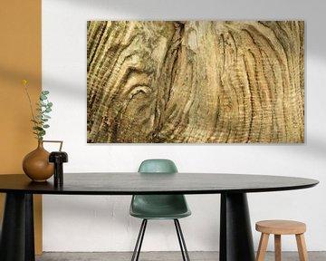 Verwittertes Holz des alten Baumstammes von Art Wittingen