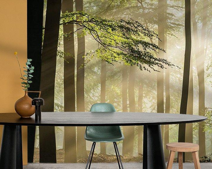 Sfeerimpressie behang: Zonnestralen op beukenblad van Theo Klos