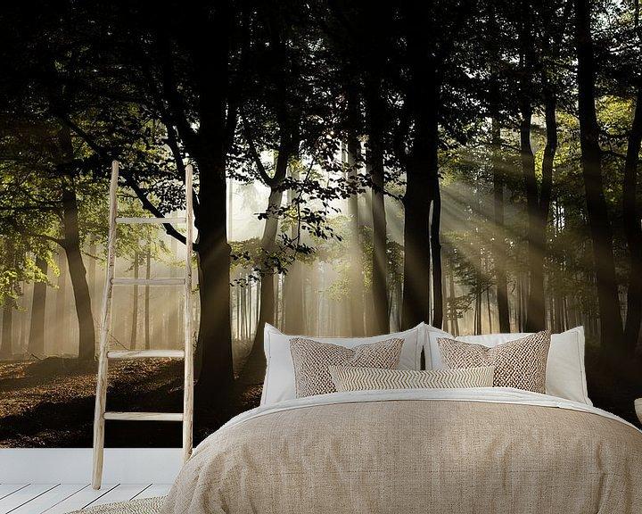 Sfeerimpressie behang: Zonnestralen in het bos van Theo Klos