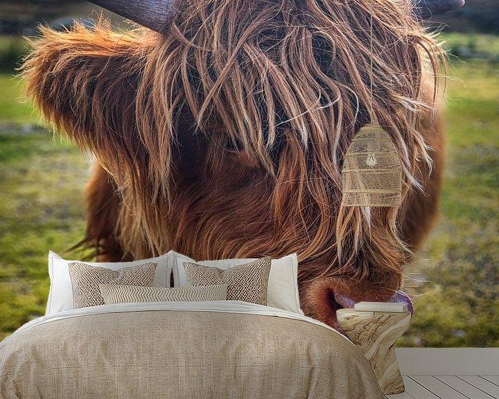 Sfeerimpressie behang: Close up van een Schotse Hooglander van Jasper den Boer