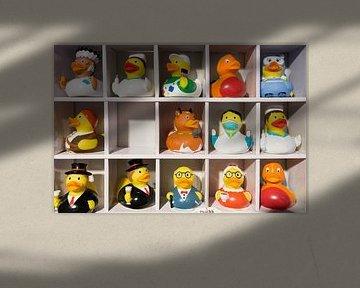 Missing Duck van Kees Gruijters