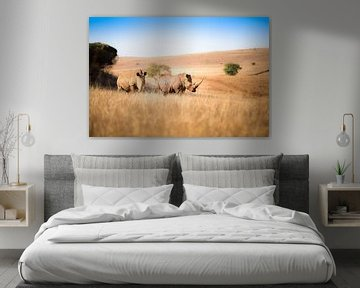 Nashorn Paar von Thomas Froemmel