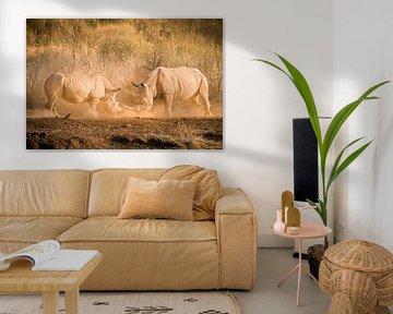 Fighting Rhino van Thomas Froemmel