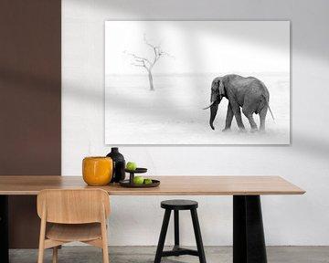 Elefant und Baum von Thomas Froemmel