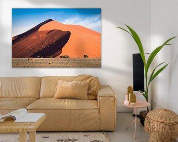 Dune X van Thomas Froemmel