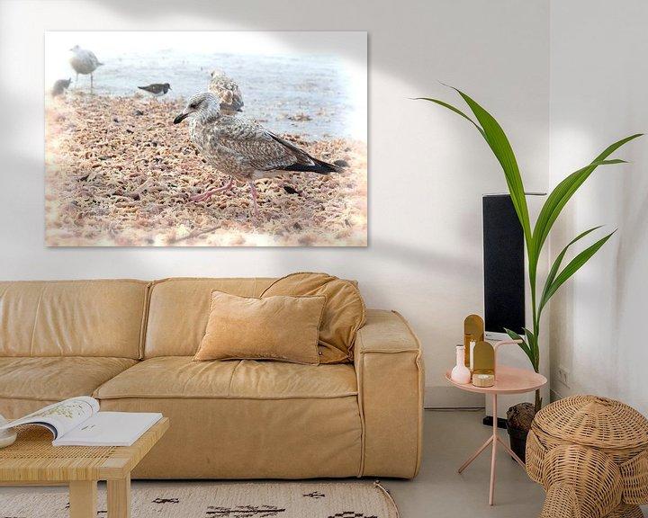 Impression: Zeebanket, zeesterren, Starfish, Seagull sur Yvonne Balvers