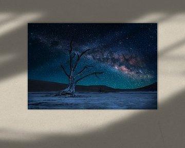 Dead Tree and Milky Way van Thomas Froemmel