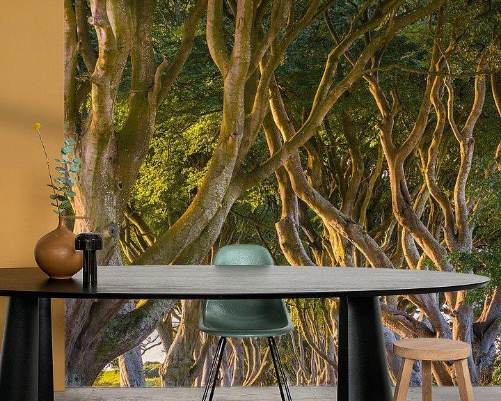 Sfeerimpressie behang: The Dark Hedges, Noord-Ierland van Henk Meijer Photography