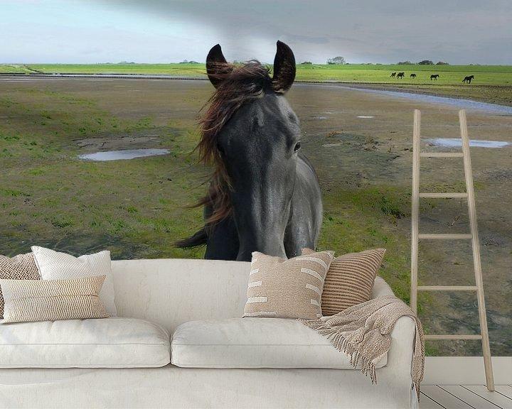 Beispiel fototapete: 31. Außenbereich, Noarderleech, friesisches Pferd. von Alies werk