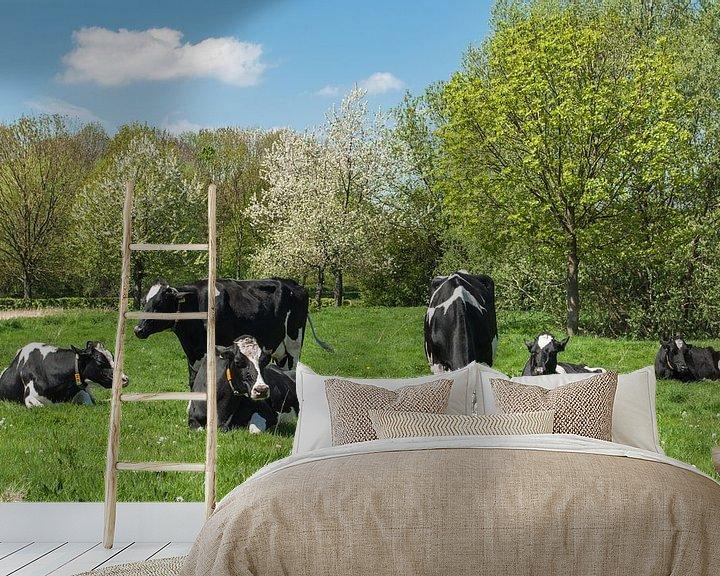 Sfeerimpressie behang: Voorjaars moeheid, koeien in het weiland van Leo Langen
