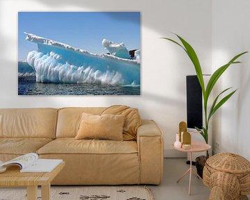 IJsberg, Iceberg, Groenland, Greenland van Yvonne Balvers
