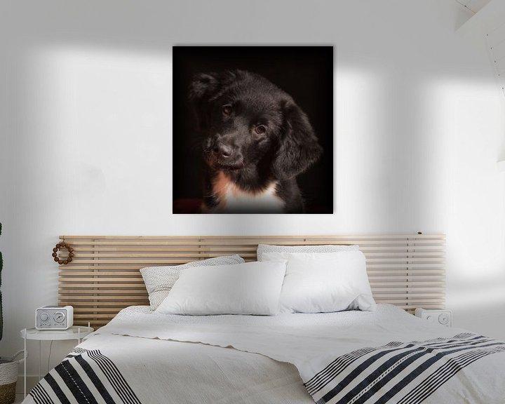 Sfeerimpressie: Puppy Love van Eddie Meijer