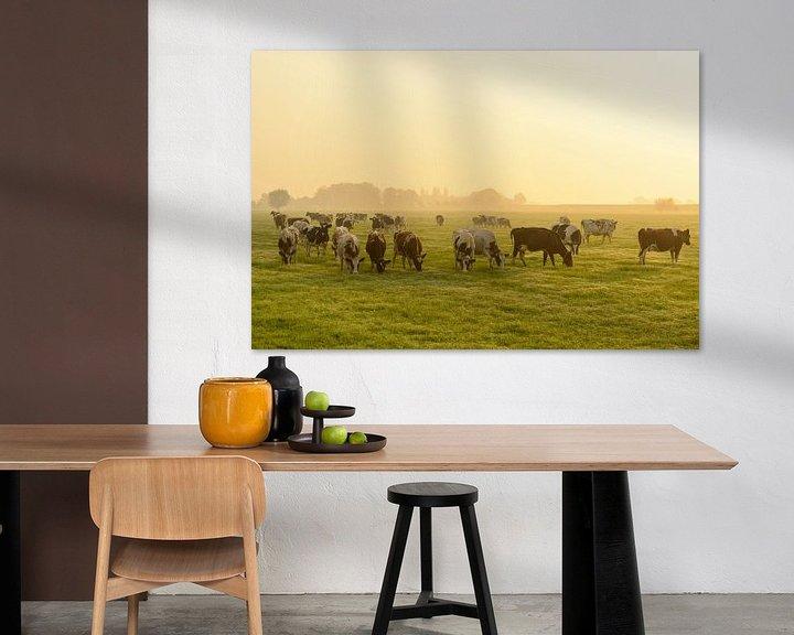 Sfeerimpressie: Koeien in de wei tijdens een mistige zonsopkomst van Sjoerd van der Wal
