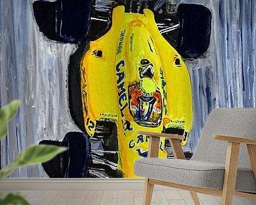 Ayrton Senna - The Lotus Years van DeVerviers