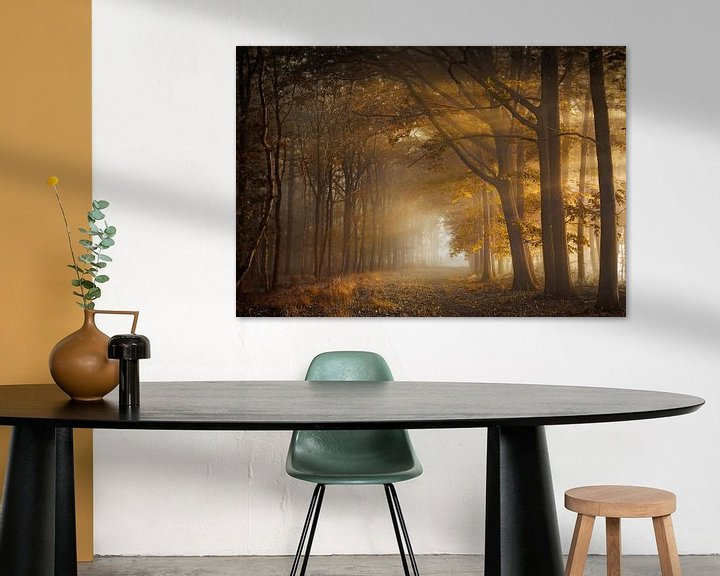 Sfeerimpressie: Fortune forest van Rob Visser