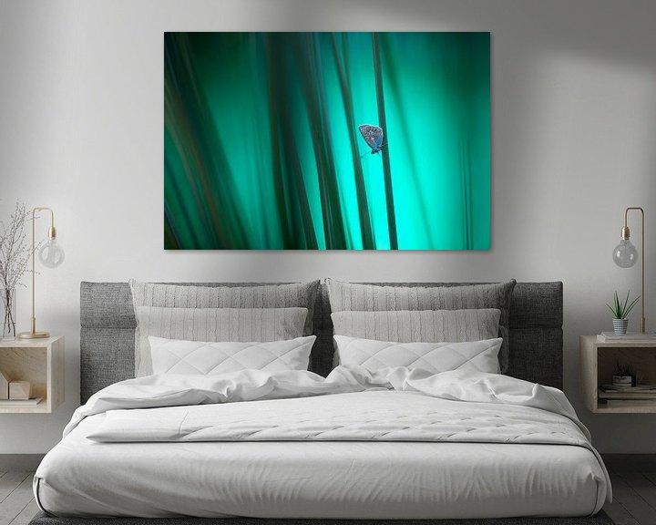 Sfeerimpressie: Icarusblauwtje van Judith Borremans