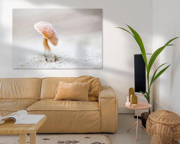 Sfeerimpressie: Duinfranjehoed paddenstoel van Judith Borremans