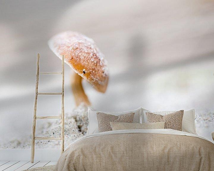 Sfeerimpressie behang: Duinfranjehoed paddenstoel van Judith Borremans