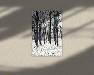 Koude winterdag van Ada Zyborowicz