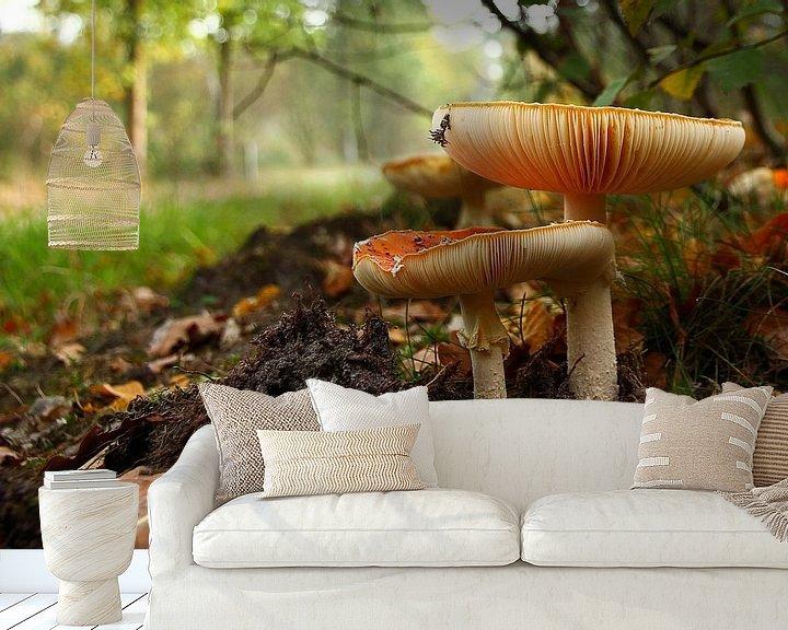 Sfeerimpressie behang: Tis weer herfst van Anya Lobers