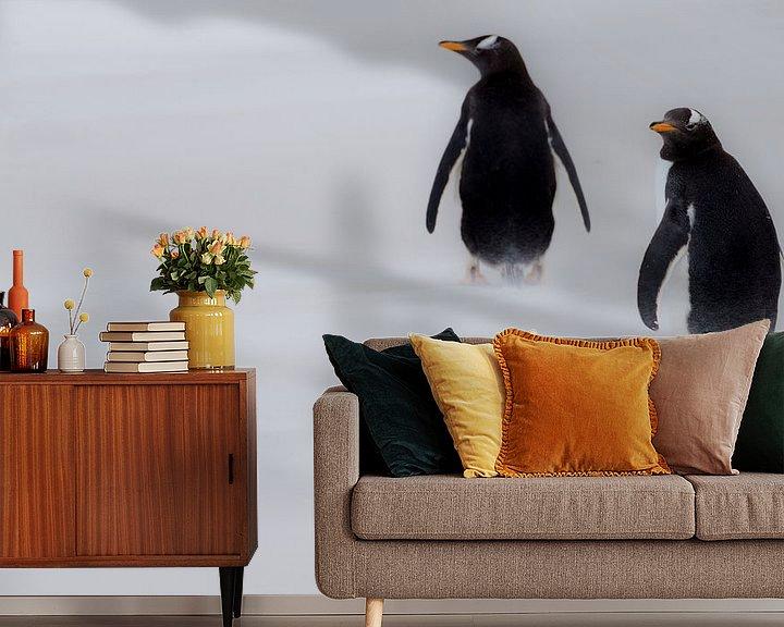 Sfeerimpressie behang: Gentoos in the mist van Claudia van Zanten
