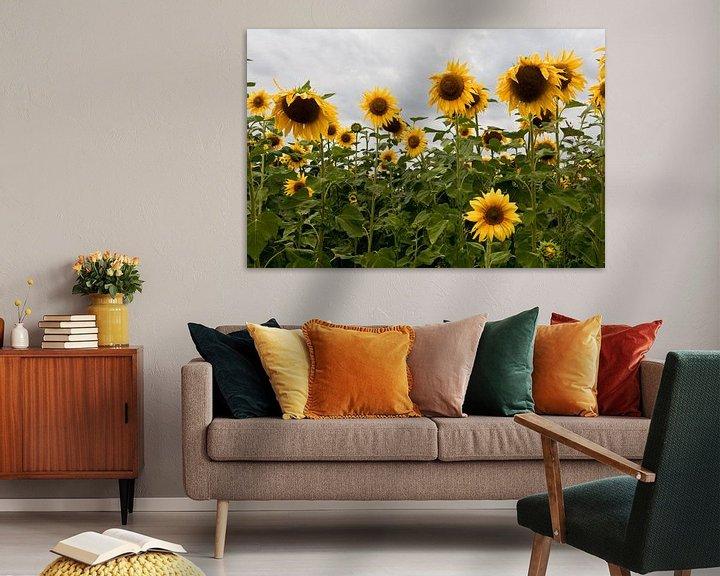 Sfeerimpressie: Zonnebloemen van Jim van Iterson