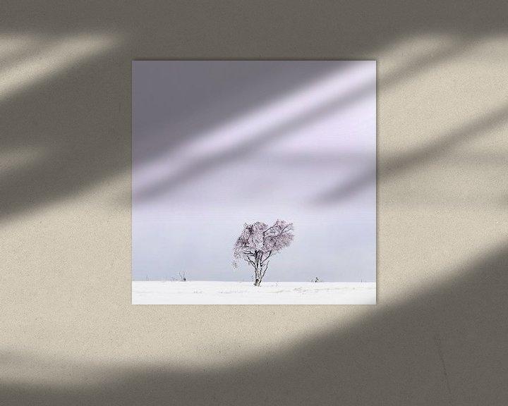 Sfeerimpressie: Winter Hoge Venen van Steven Hendrix