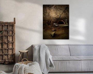The Cave von Maarten De Schrijver