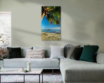 4 Mile Beach, Port Douglas; Far North Queensland - Australia van Van Oostrum Photography