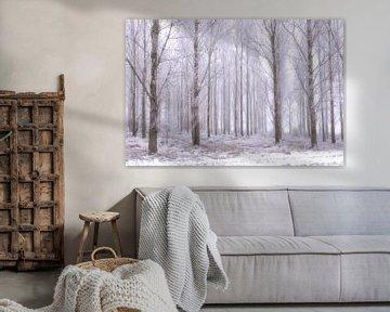 Bomen in rijp. von Sigrid Westerbaan