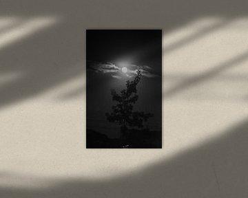 Moon von Lenna Teklenburg