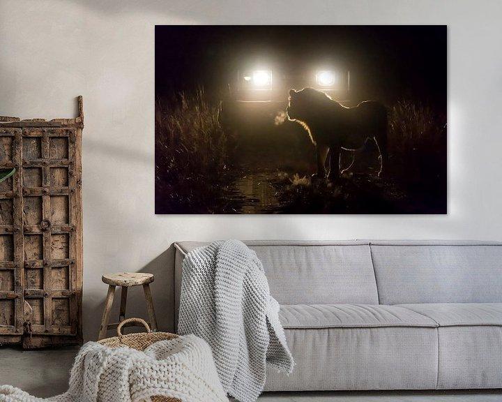 Beispiel: Night Encounter! von Claudia van Zanten