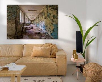 Afgebladderde muren van Truus Nijland