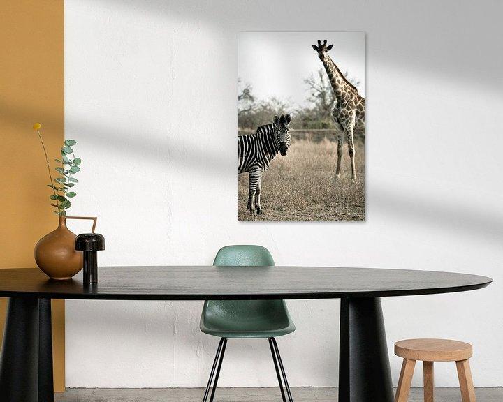 Sfeerimpressie: Zebra and giraffe van Jasper van der Meij