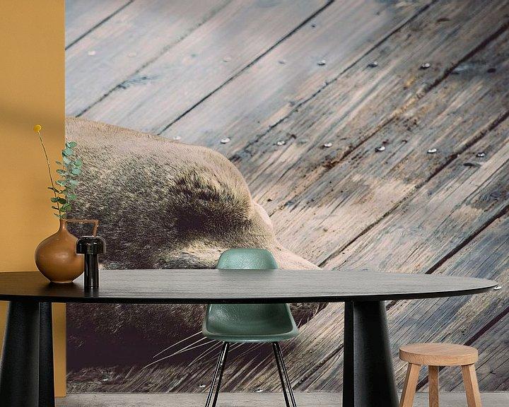 Sfeerimpressie behang: Slapende zeeleeuw van Chantal Nederstigt