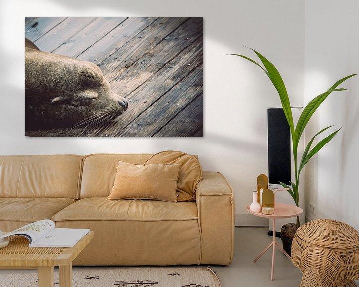 Sfeerimpressie: Slapende zeeleeuw van Chantal Nederstigt