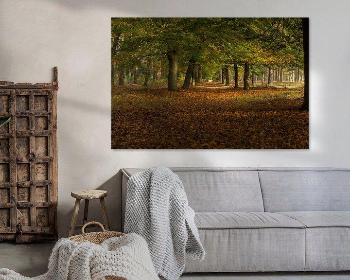 Sfeerimpressie: autumn and trees van Above The Grid