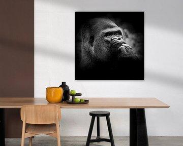 Gorilla - to be or not to be von Ulrich Brodde