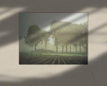 Fade away van Aart Lameris