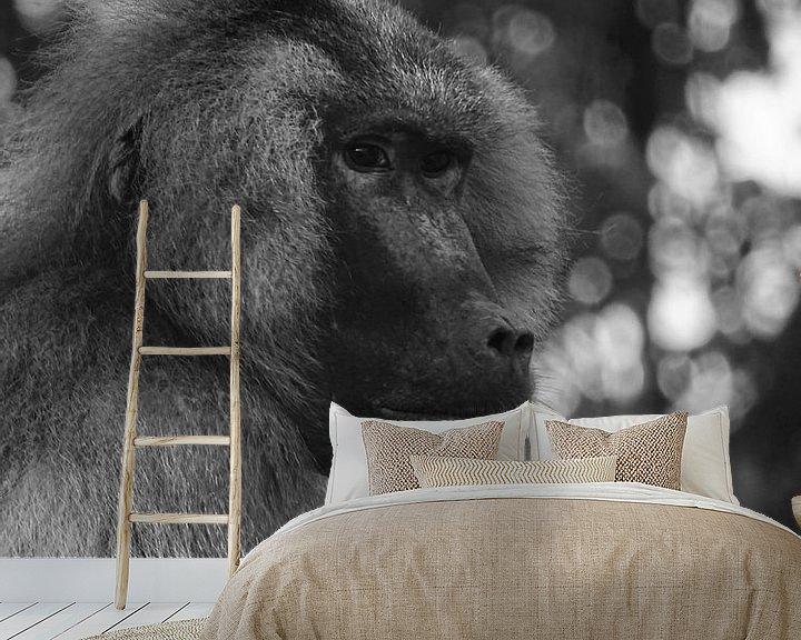 Beispiel fototapete: Pavian  von Sandra de Moree