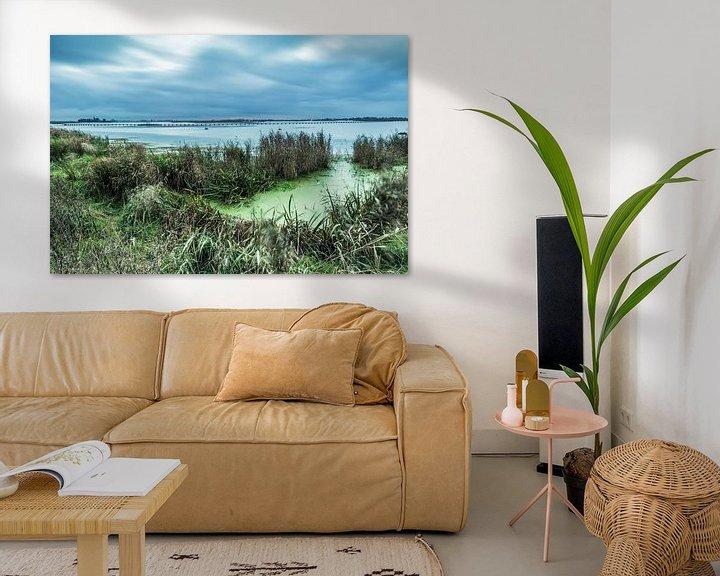 Sfeerimpressie: Het Dannemeer is een natuurgebied in Groningen van Arline Photography