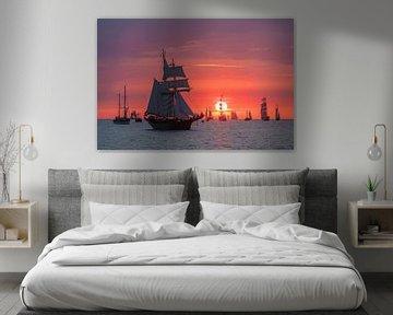 Segelschiffe auf der Hanse Sail in Rostock von Rico Ködder