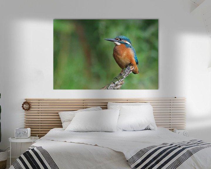 Sfeerimpressie: IJsvogel van Astrid Brouwers