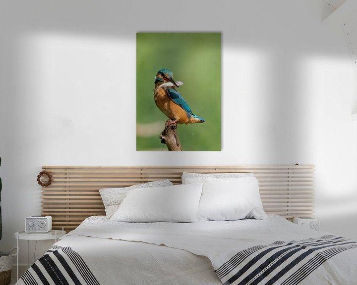 Beispiel: IJsvogel von Astrid Brouwers