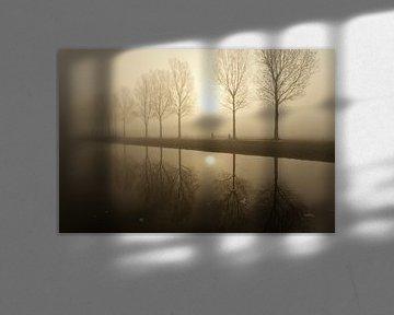 Bomen in de mist van Ron ter Burg