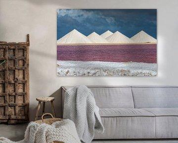 The Salt Hills of Bonaire van Martyn Buter