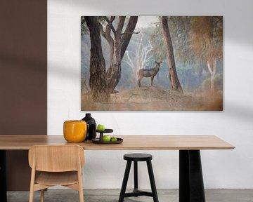 Waterbok in magisch bos van Anja Brouwer Fotografie