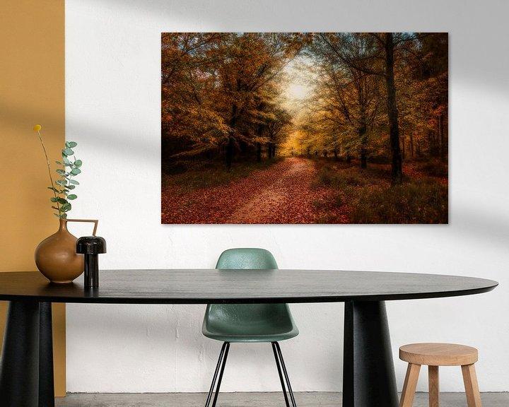 Sfeerimpressie: Herfst op de Amerongseberg van Joost Lagerweij