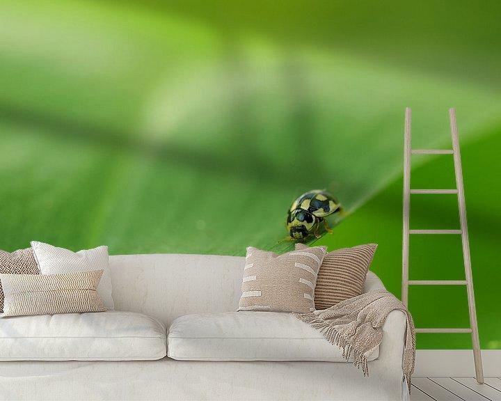 Beispiel fototapete: Citroenlieveheersbeestje von Astrid Brouwers