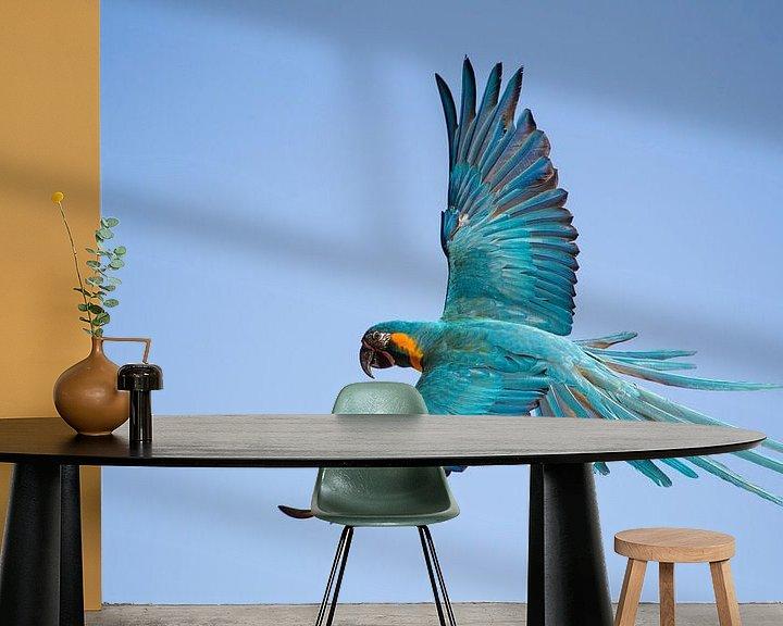 Sfeerimpressie behang: Vliegende Papagaai van Ulrich Brodde